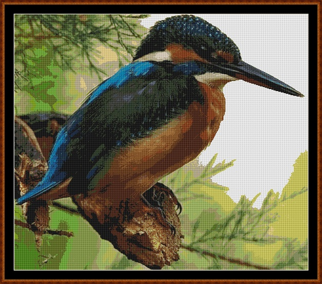 Kingfisher Cross Stitch