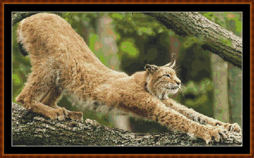 Morning Stretch Cross Stitch
