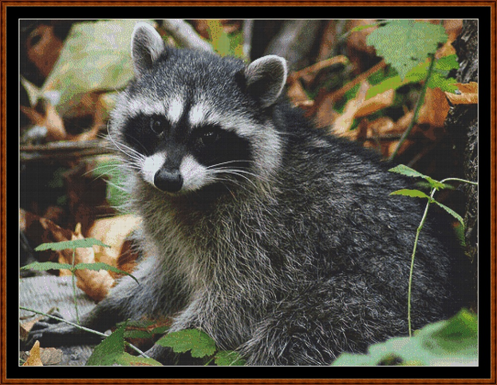Raccoon Cross Stitch