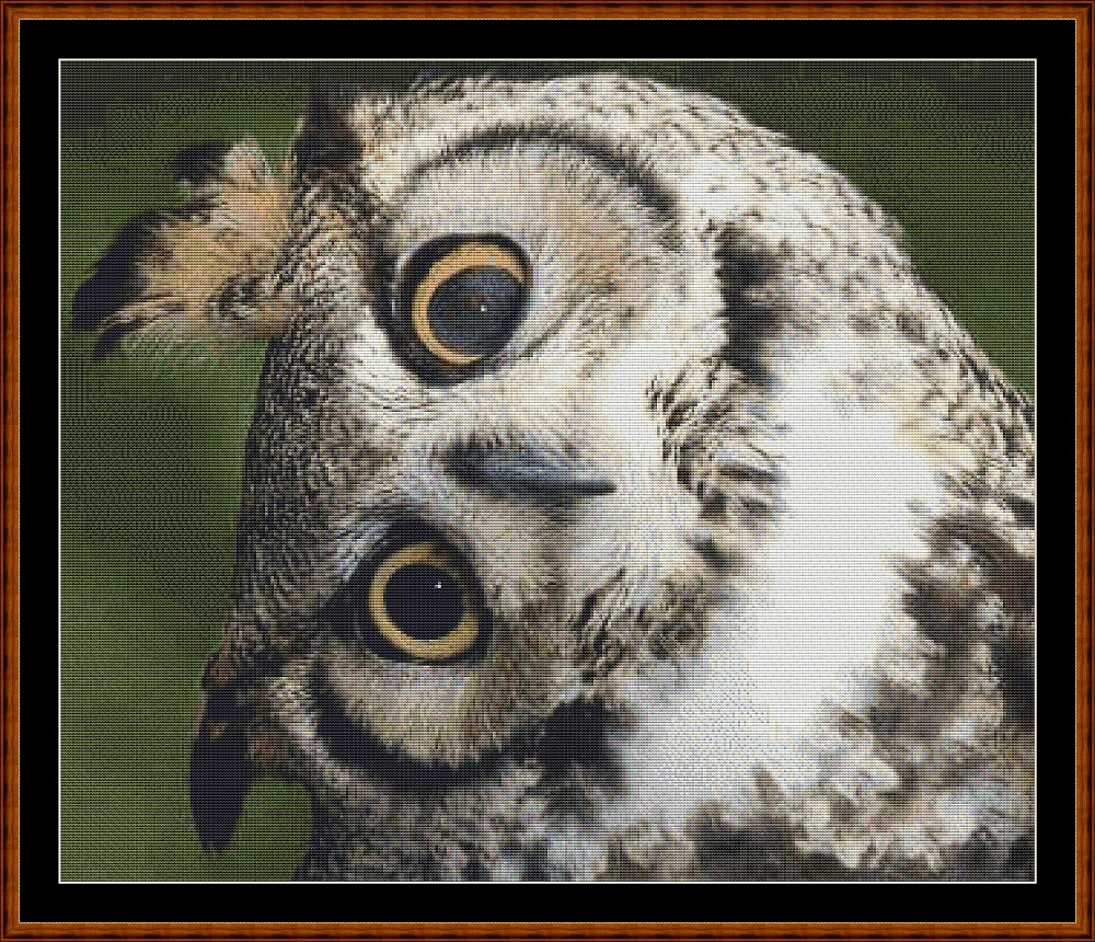 Long Eared Owl - Just The Head Cross Stitch