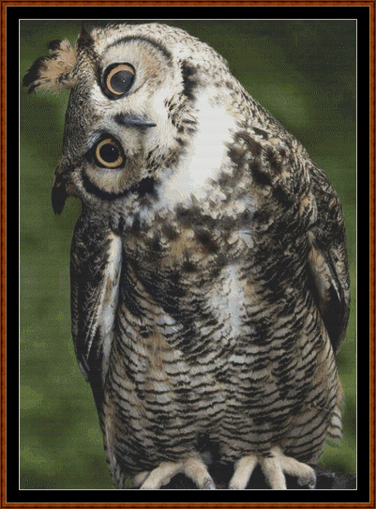 Long Eared Owl Cross Stitch
