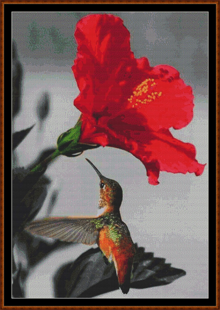 Hummingbird 2 Cross Stitch