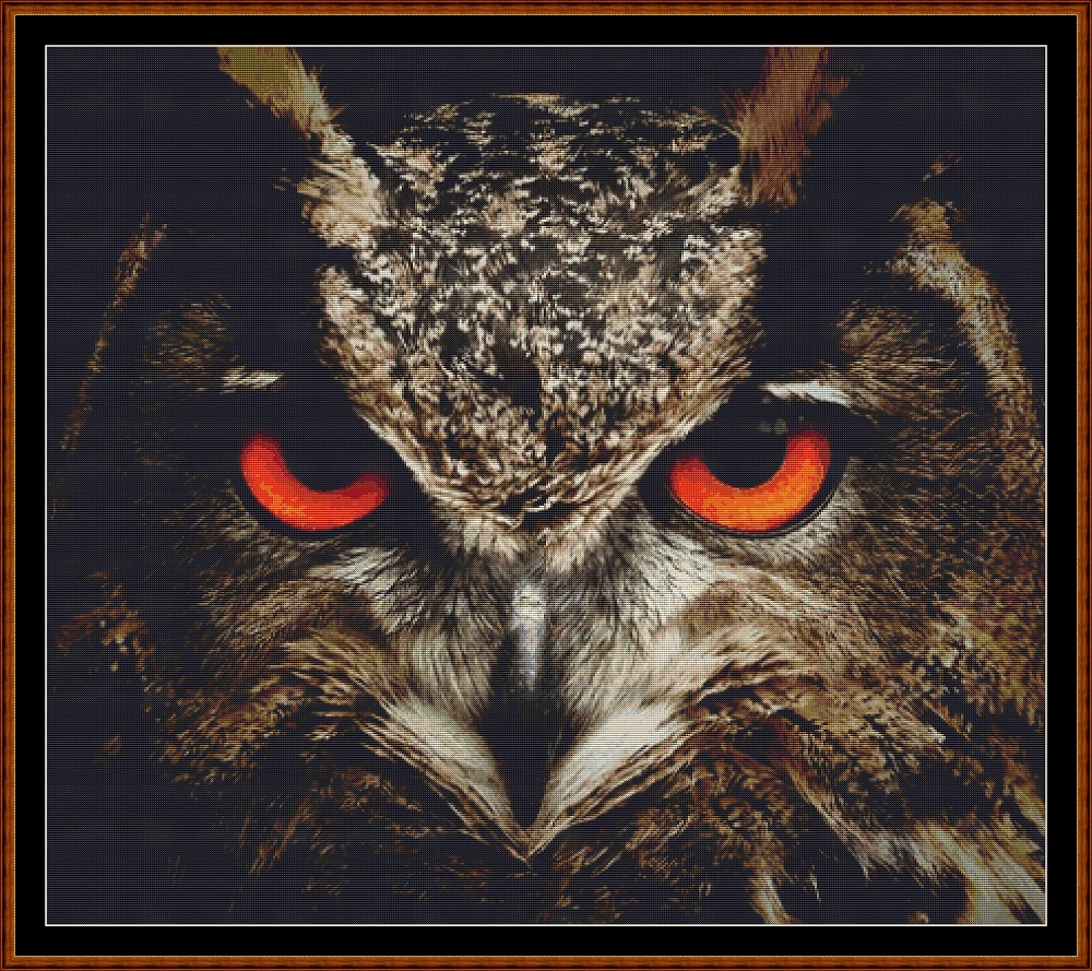 The Owl Stare Cross Stitch