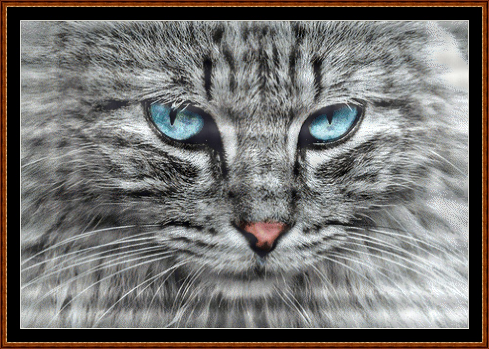 Blue Eyes Cross Stitch