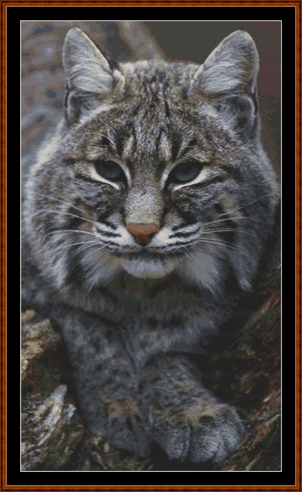Fierce Creatures - Bobcat Cross Stitch