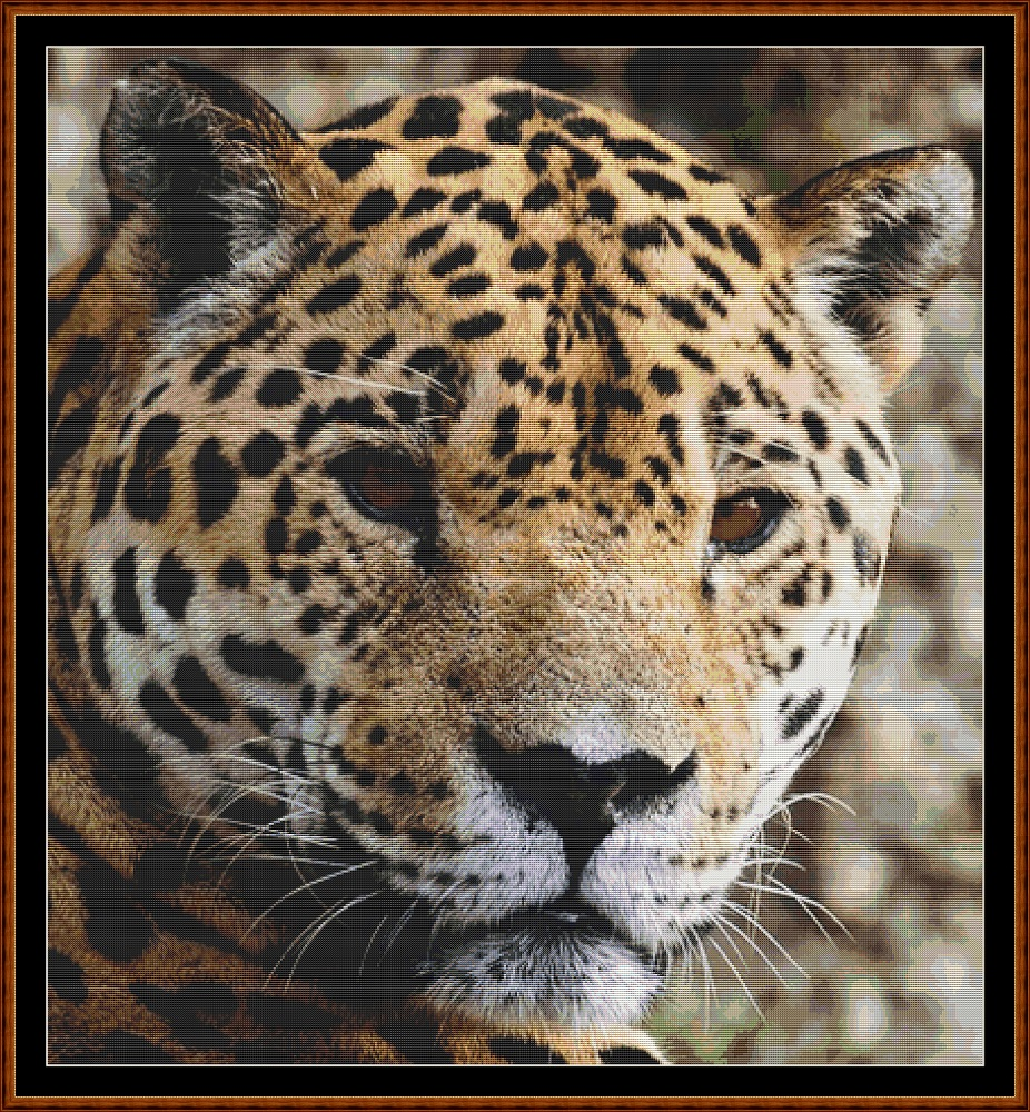 Wild Faces - Jaguar Cross Stitch