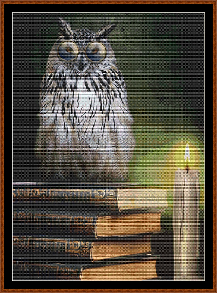 Book Owl Cross Stitch