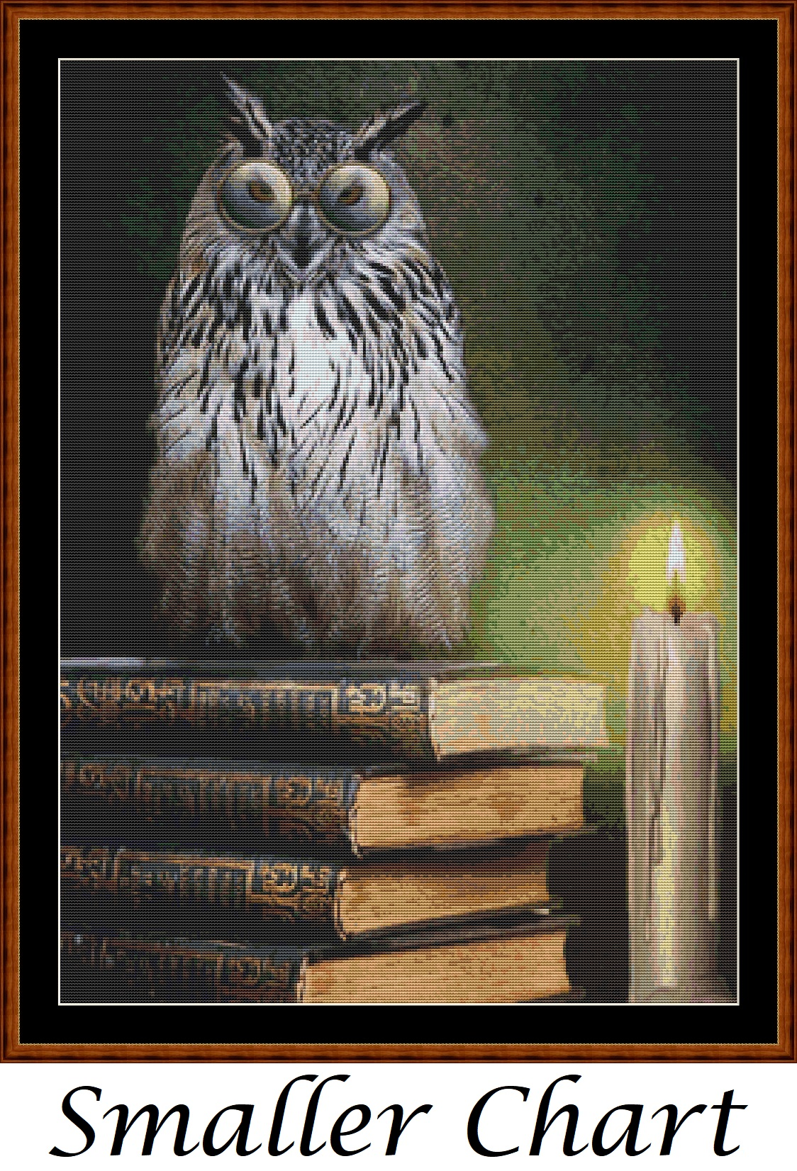 Book Owl Cross Stitch - Click Image to Close
