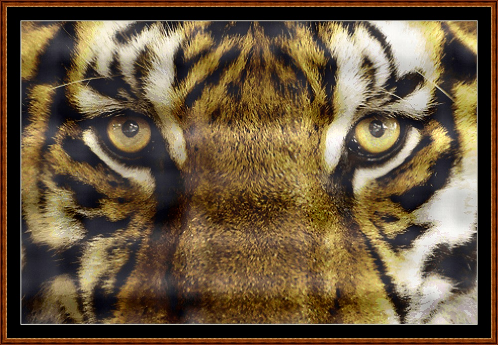 Eyes - Tiger Cross Stitch