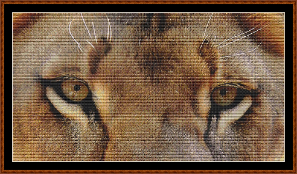 Lion Eyes Cross Stitch