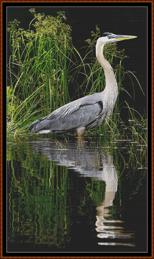Reflections - Heron