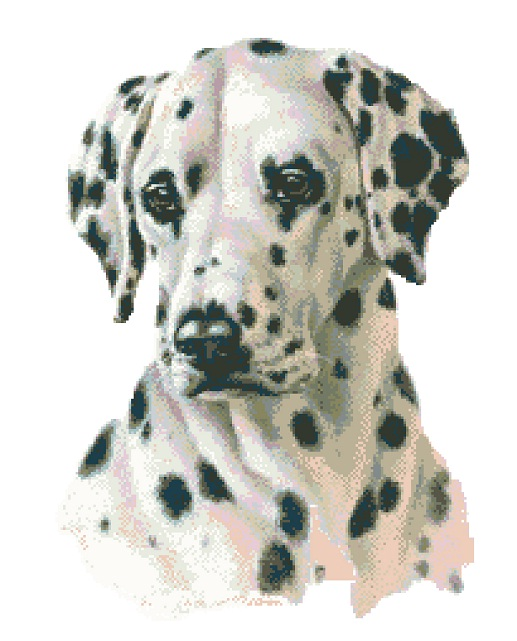 Dalmatian Cross Stitch