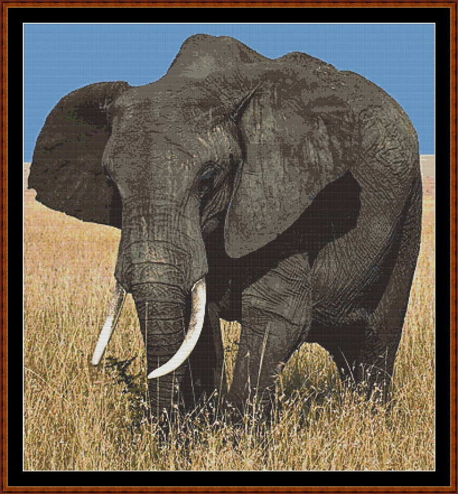 African Elephant Cross Stitch